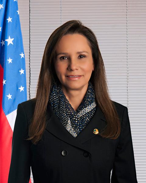 Sandra Braga